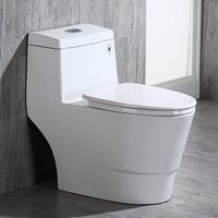 One Piece Toilet Reviews