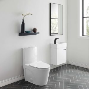Best One Piece Toilet Reviews