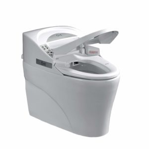 Best Smart Toilets Reviews