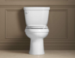Kohler Cimarron Toilet Review