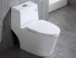 Woodbridge T 0001 Dual Flush Elongated One Piece Toilet Review