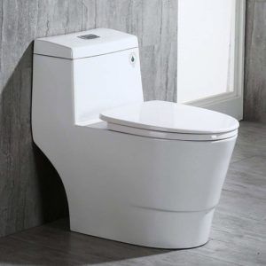 Woodbridge T 0001 Toilet Review